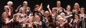 Capital Harmony Chorus performing at Sweet Adelines Convention 2016 (photo: Neil Mackenzie)